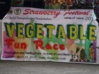vegetable-fune-race-2015-1-small