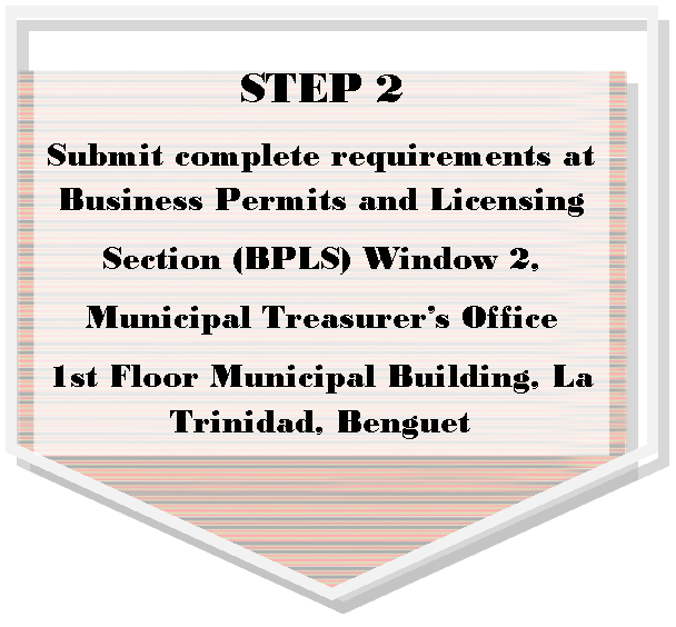 Business Permit And Licensing Municipality Of La Trinidad