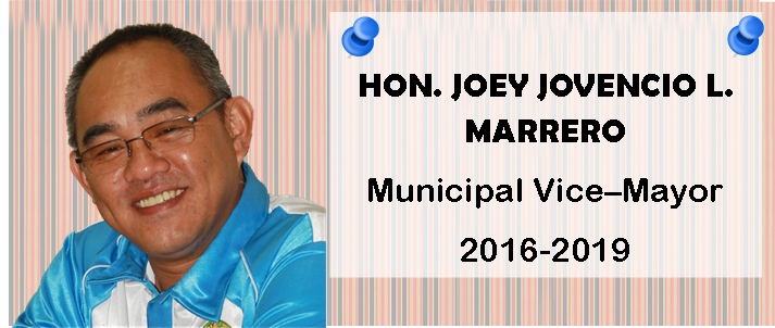 Vice-Mayor