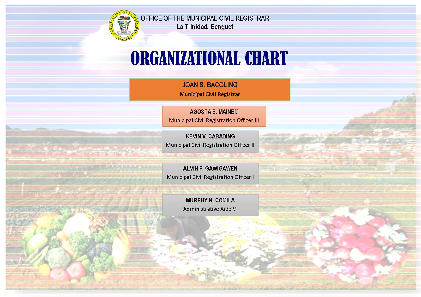 Municipal Civil Registrar's Office – MUNICIPALITY OF LA TRINIDAD