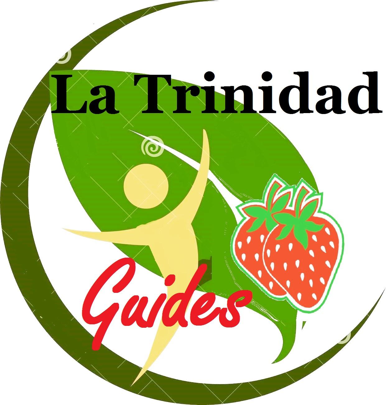 logo-lt-guides
